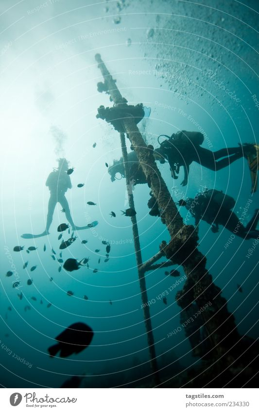 I LOVE IT Mann Natur blau Wasser Ferien & Urlaub & Reisen Meer ruhig Erholung Wasserfahrzeug Abenteuer Reisefotografie Idylle tauchen entdecken Leidenschaft