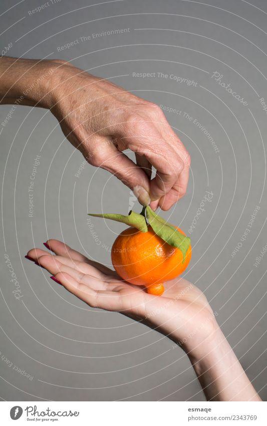 Hände halten eine natürliche Orange. Lebensmittel Frucht Ernährung Büffet Brunch Bioprodukte Lifestyle Freude Gesundheitswesen Hand 2 Mensch Diät