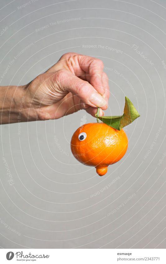 Natur schön Hand Freude Essen Leben Lifestyle Gesundheit natürlich Gesundheitswesen Lebensmittel orange Frucht Ernährung Orange frisch