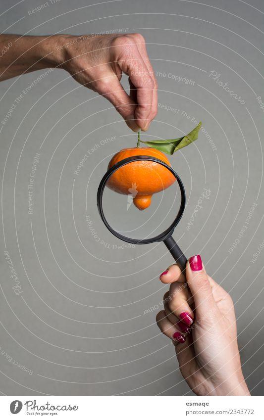 Mandarine mit Lupe beobachtet Lebensmittel Frucht Orange Ernährung Essen Bioprodukte Vegetarische Ernährung Diät Lupeneffekt beobachten außergewöhnlich Duft