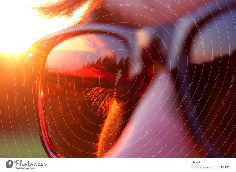 Sonnenbrille im Einsatz Mensch Auge Haare & Frisuren Zufriedenheit Coolness Sonnenbrille Wimpern Gegenlicht Reflexion & Spiegelung