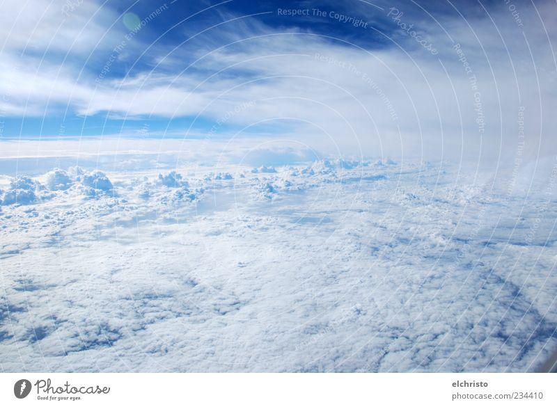 Zwischen unten und oben, quasi dazwischen Himmel weiß Wolken Ferne oben Freiheit Luft Luftverkehr Schönes Wetter fantastisch Blauer Himmel Luftaufnahme Wolkendecke Flugzeugausblick über den Wolken Wattewölkchen