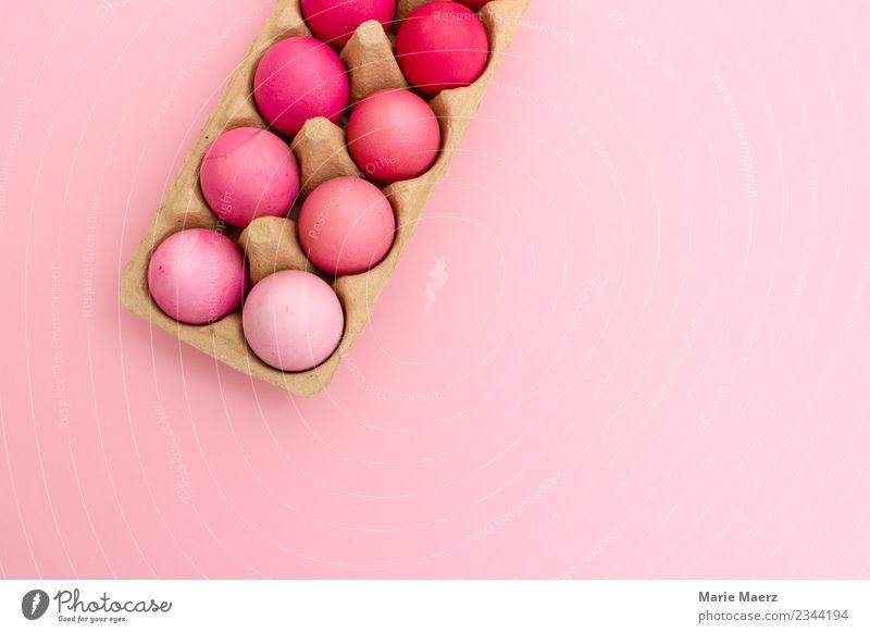 Eierschachlte mit rosa Ostereiern nach Farbe sortiert schön Freude Essen Design Freizeit & Hobby springen ästhetisch einfach kochen & garen Ostern trendy machen