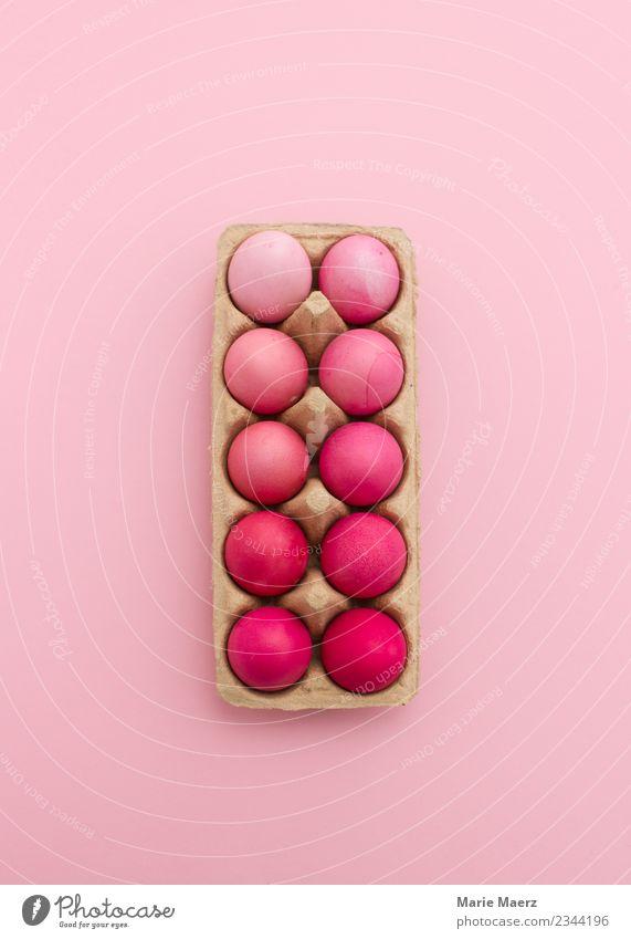 Rosa Eier in Eierschachtel Design Ostern Essen ästhetisch schön rosa Ordnungsliebe Farbe Inspiration Kreativität Kunst Farbverlauf Osterei färben sortieren