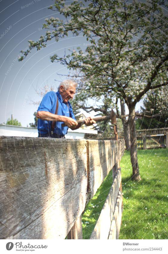 Gartenarbeit Mensch Natur blau grün Baum Pflanze Sommer Leben Wiese Landschaft Senior Holz Frühling Garten Gesundheit Arbeit & Erwerbstätigkeit