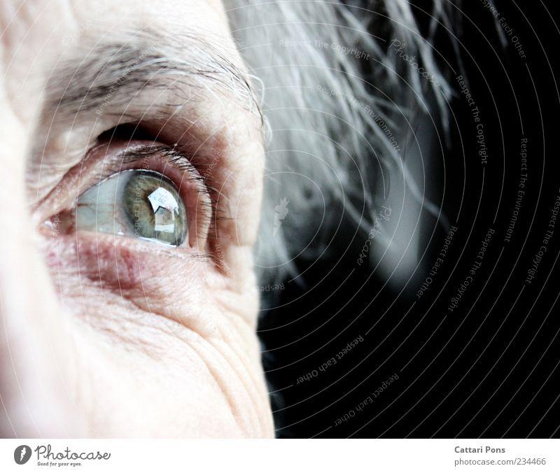 Im Herz bleibst du immer! Weiblicher Senior Frau Auge 1 Mensch grauhaarig weißhaarig Denken Blick alt Unendlichkeit nah grün erinnern Erinnerung Augenbraue