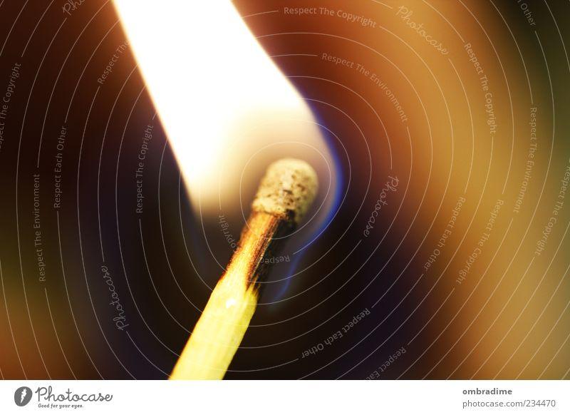 FIRE FLAME Feuer heiß gelb gold schwarz Streichholz Flamme Farbfoto Nahaufnahme Detailaufnahme Makroaufnahme Textfreiraum links Textfreiraum rechts Abend