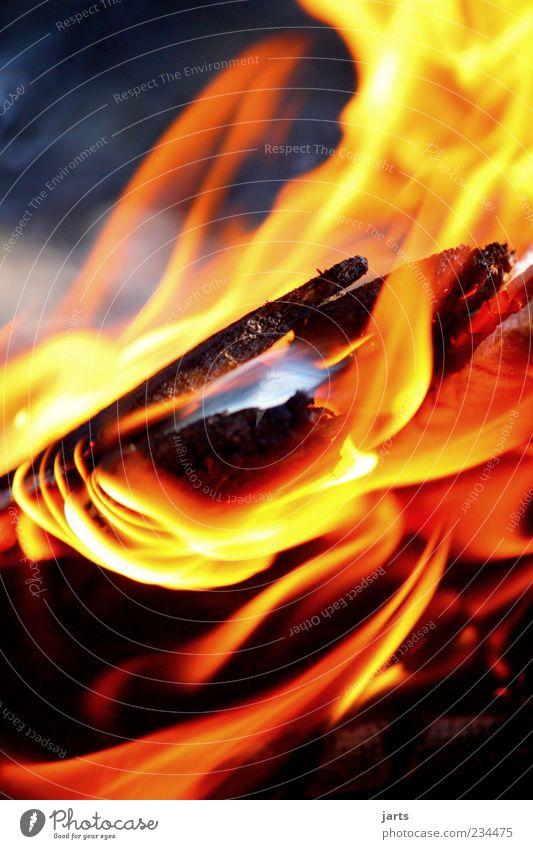 lagerfeuer Holz heiß hell Feuer Feuerstelle Flamme Glut Farbfoto Außenaufnahme Detailaufnahme Menschenleer Textfreiraum oben Textfreiraum unten