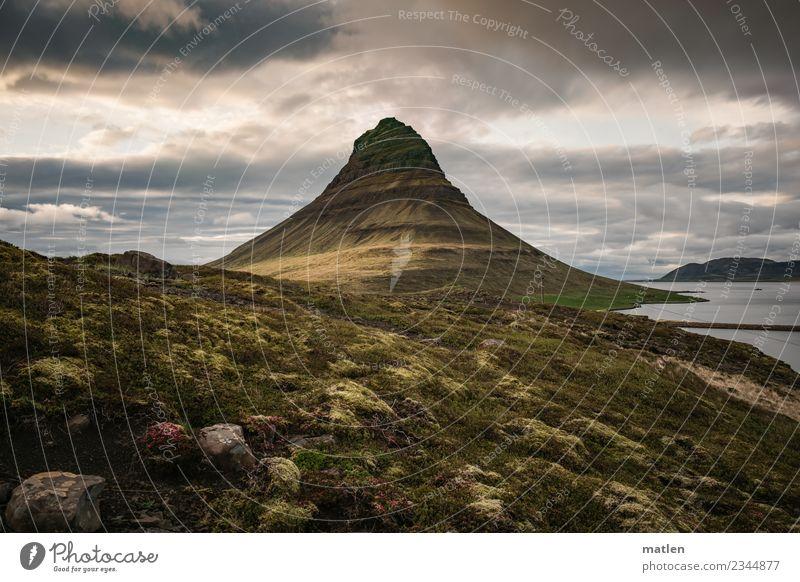 Islaendischer Fruehling Himmel blau Pflanze grün Landschaft weiß Meer Wolken dunkel gelb Frühling Wiese Küste Gras grau braun