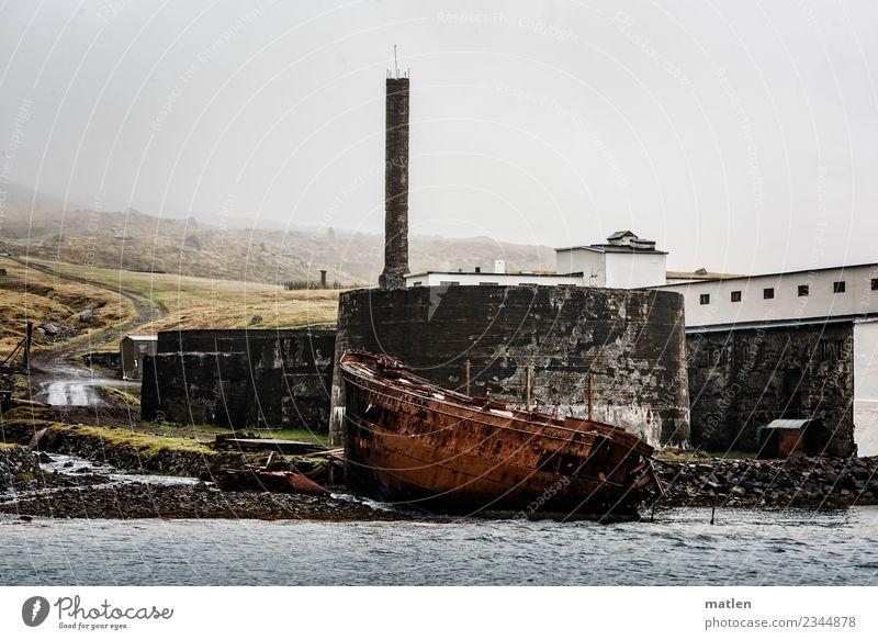 die alte Fischfabrik Fabrik Ruine Gebäude Mauer Wand Fassade Schornstein Wahrzeichen dunkel kalt braun grau grün weiß Schiffswrack Rost Island Westfjord Nebel