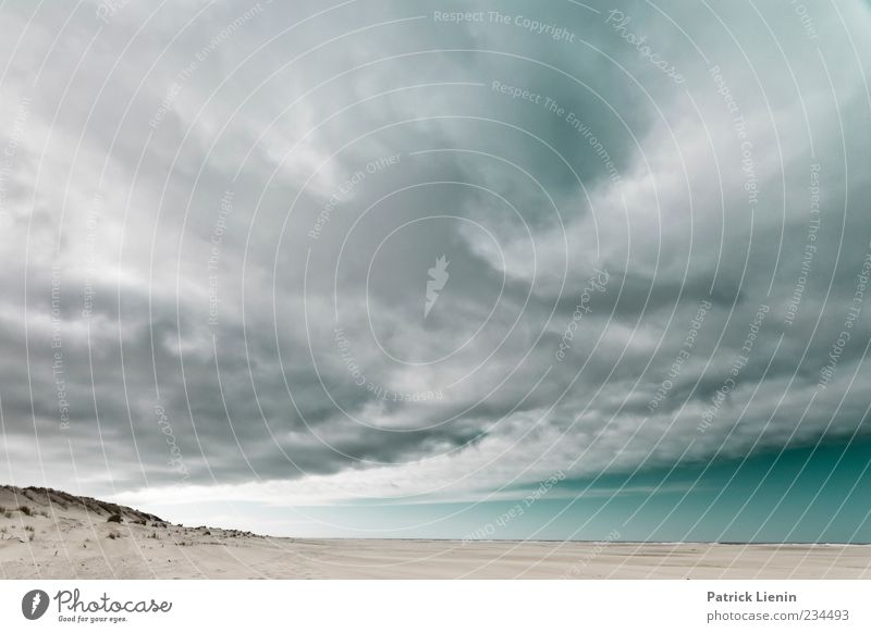 Spiekeroog | run away Meer Umwelt Natur Landschaft Urelemente Sand Luft Himmel Wolken Gewitterwolken Klima Klimawandel Wetter schlechtes Wetter Unwetter Wind