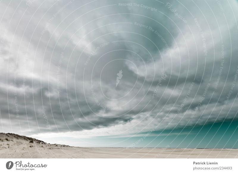 Spiekeroog | run away Natur Himmel Meer Wolken dunkel grau Sand Landschaft Luft Stimmung Kraft Küste Wind Wetter Umwelt hoch