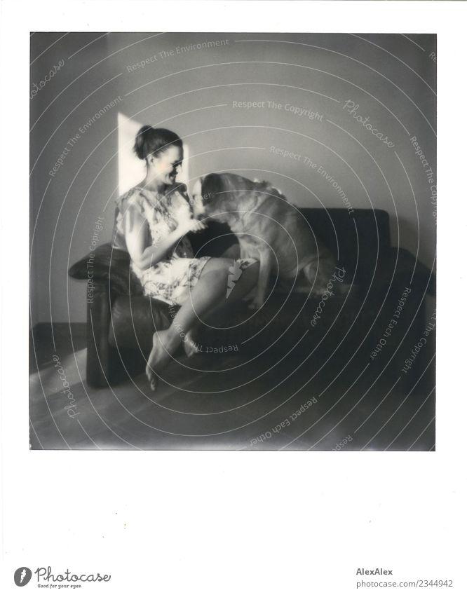 Auf den Hund gekommen Freude schön Wohlgefühl Wohnung Raum Jugendliche Beine Fuß 18-30 Jahre Erwachsene Sofa Kleid Barfuß brünett langhaarig Labrador Polaroid