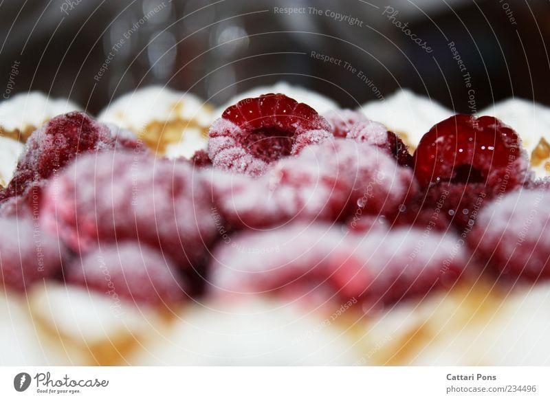 Himbeersahnetorte Frucht Lebensmittel nah gefroren lecker Kuchen Torte Dessert fruchtig Himbeeren Foodfotografie Ernährung tiefgekühlt Sahnetorte