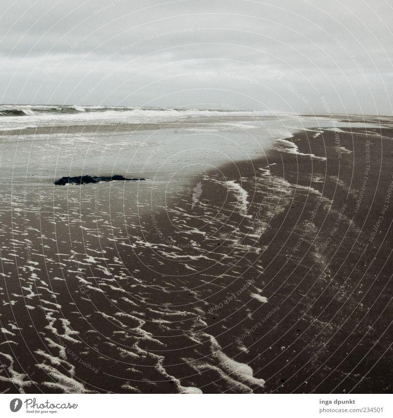 Am grauen Strand Umwelt Natur Landschaft Sand Wasser Wetter schlechtes Wetter Wind Küste Nordsee Meer Insel Wattenmeer Ostfriesische Inseln Spiekeroog