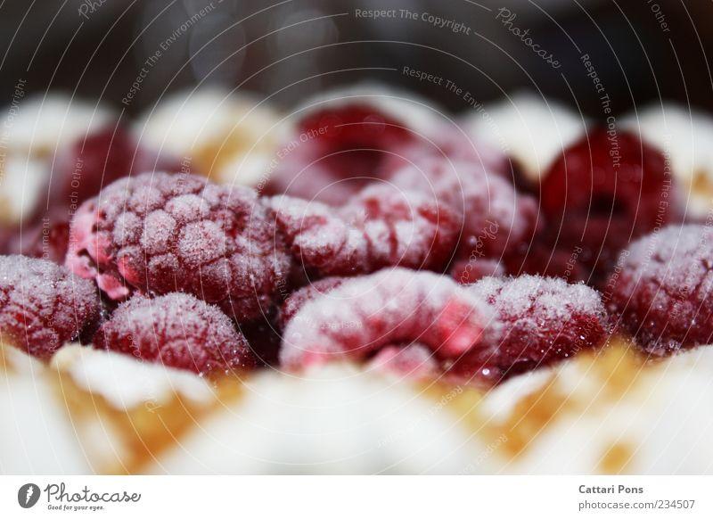 Himbeertorte rot kalt Lebensmittel frisch süß nah gefroren Kuchen Torte Dessert Himbeeren Farbe Ernährung Frucht Speise tiefgekühlt