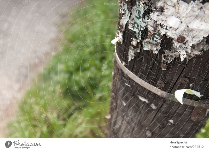 Litfaß-Säulchen Straße Holz Gras Metall braun wild Schriftzeichen Papier Asphalt Werbung Zettel Klammer Rest Holzpfahl Straßenrand Fetzen