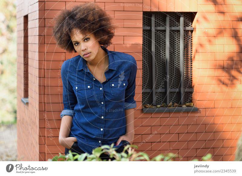 Junge schwarze Frau mit Afro-Frisur, die im Freien steht. Lifestyle Stil Glück schön Haare & Frisuren Gesicht Mensch feminin Junge Frau Jugendliche Erwachsene 1
