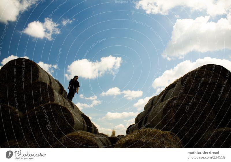 KURZ VORM ABHEBEN Mensch Himmel Natur Pflanze Sonne Sommer Freude Wolken Umwelt Landschaft Wiese springen Feld Freizeit & Hobby elegant hoch
