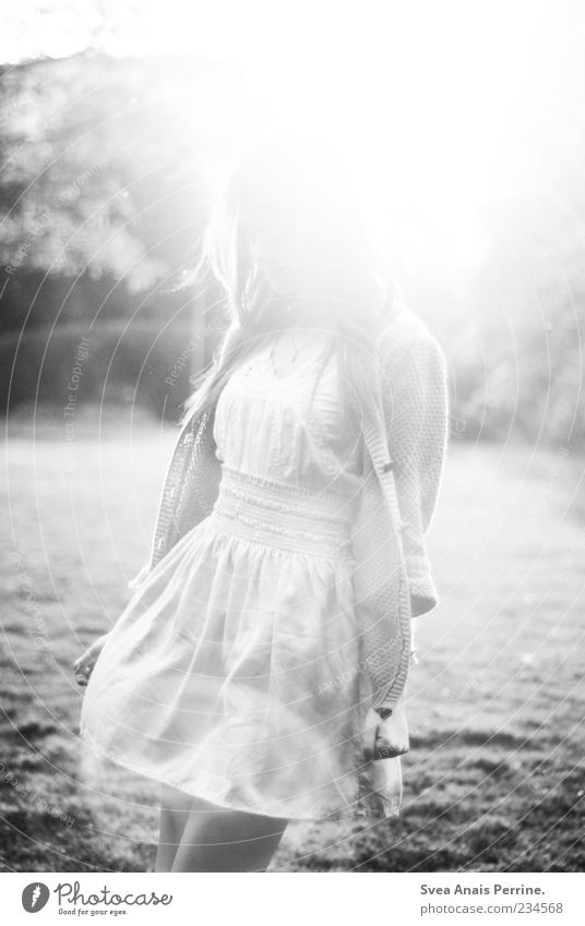 licht. Mensch Frau Jugendliche schön Freude Erwachsene Wiese feminin Glück Stil Zufriedenheit elegant außergewöhnlich Fröhlichkeit authentisch leuchten