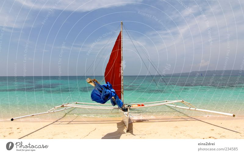 ...die Segel setzen, und los! Ferne Freiheit Strand Meer Wassersport Segeln Umwelt Natur Landschaft Urelemente Sand Luft Himmel Wolken Horizont Schönes Wetter