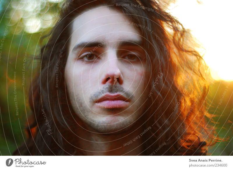 abendsonne. Mensch Mann Natur Jugendliche schön Gesicht Erwachsene Haare & Frisuren maskulin außergewöhnlich Coolness 18-30 Jahre Schönes Wetter Junger Mann Locken brünett
