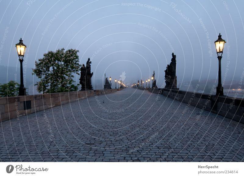Graue Stunde alt schön Einsamkeit Wege & Pfade Beleuchtung grau Stein Nebel ästhetisch leer Brücke historisch Straßenbeleuchtung Laterne Wahrzeichen Denkmal
