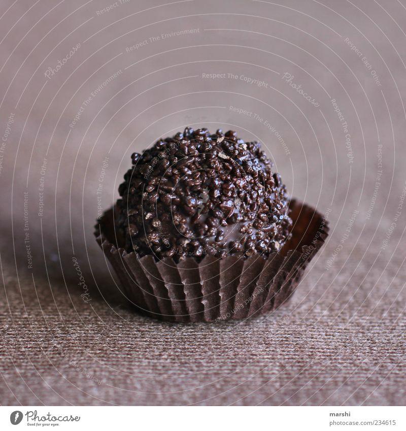 braune Versuchung Lebensmittel Süßwaren Schokolade Ernährung Konfekt Sünde Appetit & Hunger lecker geschmackvoll Geschmackssinn Farbfoto Textfreiraum oben