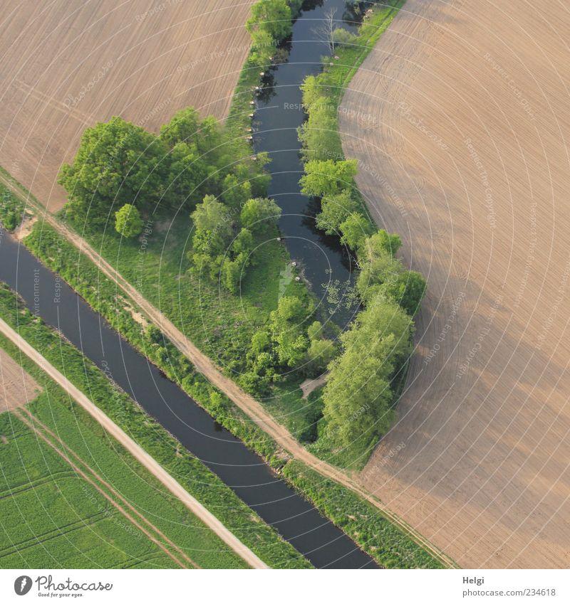* 500 * Höhenflug... Natur Wasser grün Baum Pflanze Blatt ruhig Umwelt Landschaft Freiheit Gras Sand Frühling braun Feld natürlich