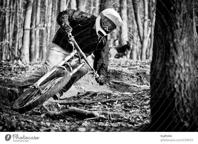 take the turn Sport Sportler Fahrradfahren Publikum Mensch maskulin 1 Natur Tier Baum Blatt Wald Hügel Geschwindigkeit sportlich schwarz Abenteuer Kurve Wurzel