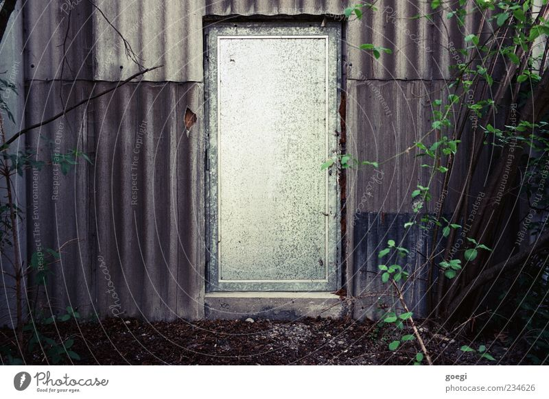 alles Blech Erde Pflanze Sträucher Grünpflanze Industrieanlage Fassade Tür Eingang Wellblech Wellblechwand Metall trist Farbfoto Außenaufnahme Menschenleer Tag