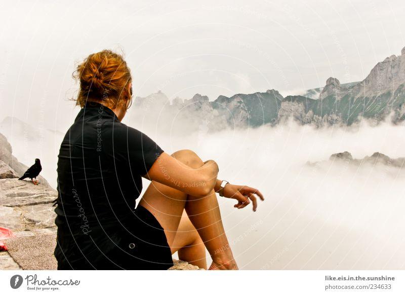 gipfelgesellschaft Mensch Frau Jugendliche schön Ferien & Urlaub & Reisen Sommer Einsamkeit ruhig Erwachsene Ferne Erholung Landschaft feminin Berge u. Gebirge Beine Zufriedenheit