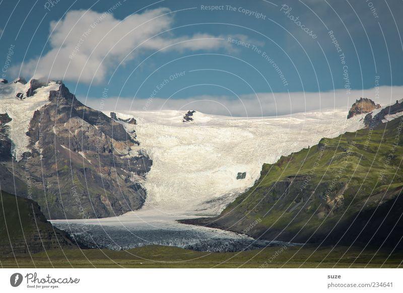 Gletscherrückzug Freiheit Berge u. Gebirge Umwelt Natur Landschaft Urelemente Erde Himmel Klima Klimawandel Schönes Wetter Eis Frost Wiese Gipfel