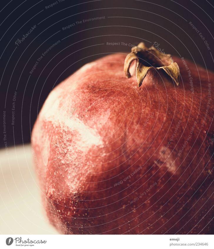 Frucht Ernährung Bioprodukte Vegetarische Ernährung rund rot Granatapfel Gesunde Ernährung reif Farbfoto Innenaufnahme Textfreiraum links Textfreiraum oben