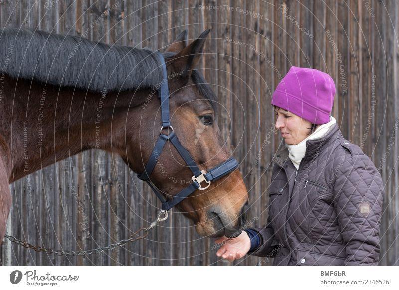 Pferdeglück Freizeit & Hobby Reiten Reiter Landwirtschaft Forstwirtschaft Mensch feminin Frau Erwachsene 1 30-45 Jahre Jacke Mütze Tier Haustier Nutztier