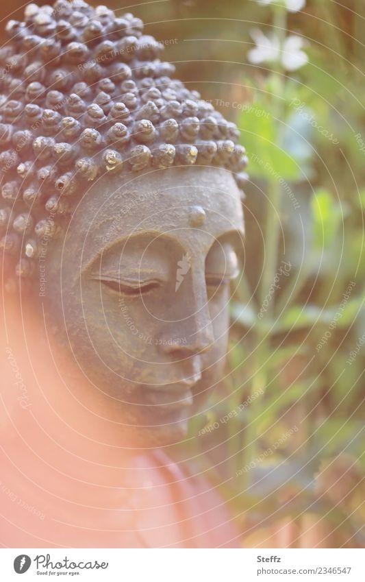 Meditation im Garten harmonisch ruhig schön grün orange Stimmung achtsam Selbstbeherrschung Weisheit Glaube Lichtstimmung Gelassenheit Religion & Glaube Buddha