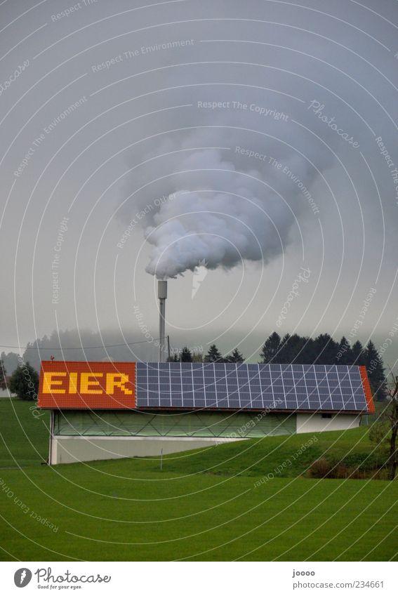 Rauchende Eier Gebäude Nebel außergewöhnlich Dach Wort Schornstein Umweltverschmutzung Großbuchstabe Rauchwolke Eierproduktion