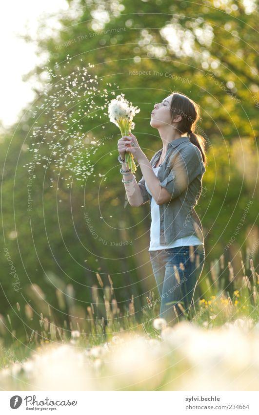 * * * * * Freude Mensch feminin Junge Frau Jugendliche Leben 1 Umwelt Natur Pflanze Frühling Baum Blume Gras Wiese atmen fliegen leuchten Unendlichkeit grün