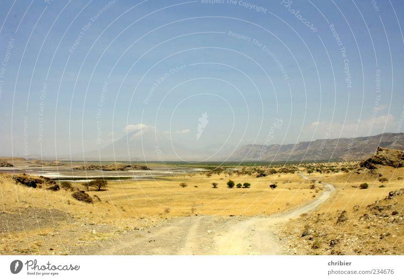 it´s a long way... Umwelt Natur Landschaft Erde Sand Himmel Horizont Sommer Dürre Pflanze Sträucher Hügel Felsen Vulkan Wüste Ödland Wege & Pfade dehydrieren