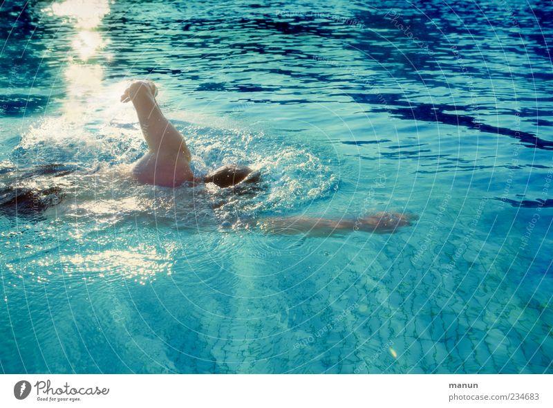 Schwimmfoto Mensch Mann Erwachsene Bewegung Freizeit & Hobby Schwimmen & Baden maskulin authentisch Schwimmbad Fitness sportlich Sport Kraulstil schwimmen