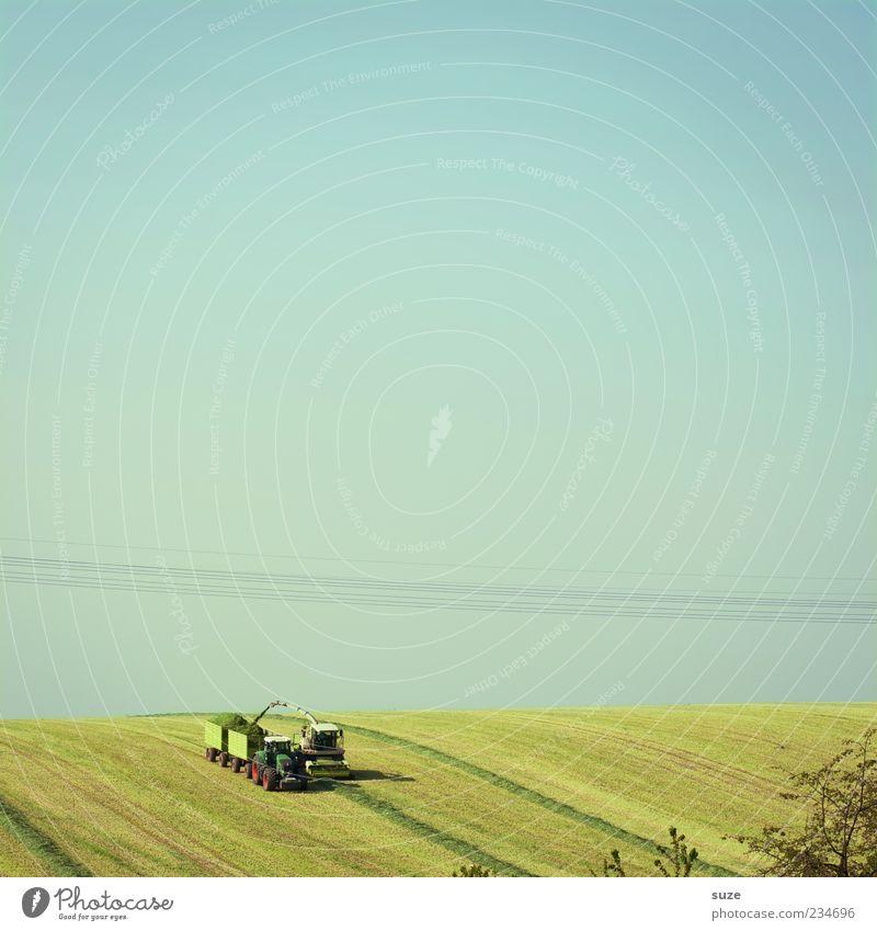 Dregga fahr'n Himmel Natur blau grün Sommer Landschaft Ferne Umwelt Wiese Gras Horizont Arbeit & Erwerbstätigkeit Feld Erde natürlich Schönes Wetter
