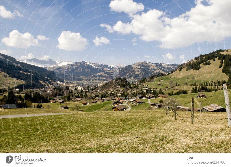 Saanenland Sommer Berge u. Gebirge Natur Landschaft Wolken Sonnenlicht Frühling Schönes Wetter Gras Wiese Hügel Alpen schön Gstaad Skigebiet Heimat Schweiz Dorf