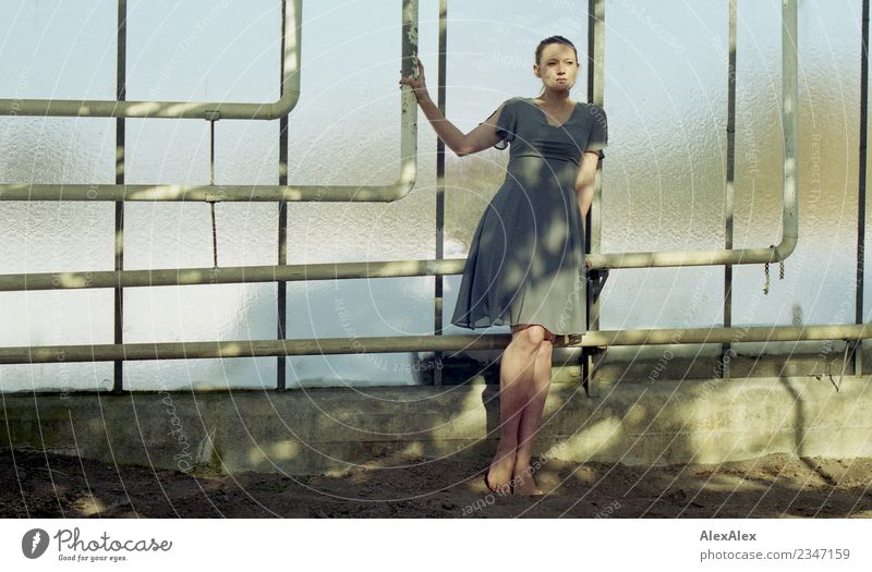 Junge Frau in einem leeren Gewächshaus Himmel Jugendliche schön Erotik Fenster 18-30 Jahre Erwachsene natürlich Körper elegant ästhetisch Glas Schönes Wetter