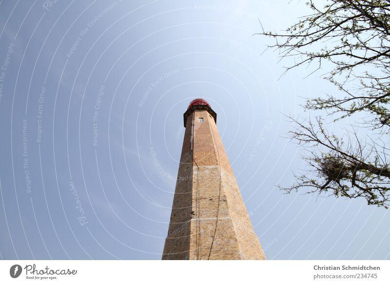 Der Turm Umwelt Himmel Baum Hafenstadt Leuchtturm Bauwerk Sehenswürdigkeit Wahrzeichen Denkmal alt groß blau braun Fehmarn Farbfoto Außenaufnahme Menschenleer