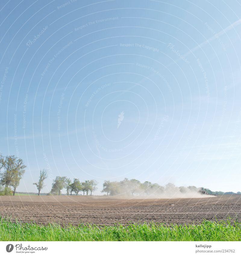 sich aus dem staub machen Arbeit & Erwerbstätigkeit Beruf Wirtschaft Umwelt Natur Landschaft Pflanze Luft Frühling Schönes Wetter Baum Gras Blatt Feld Traktor