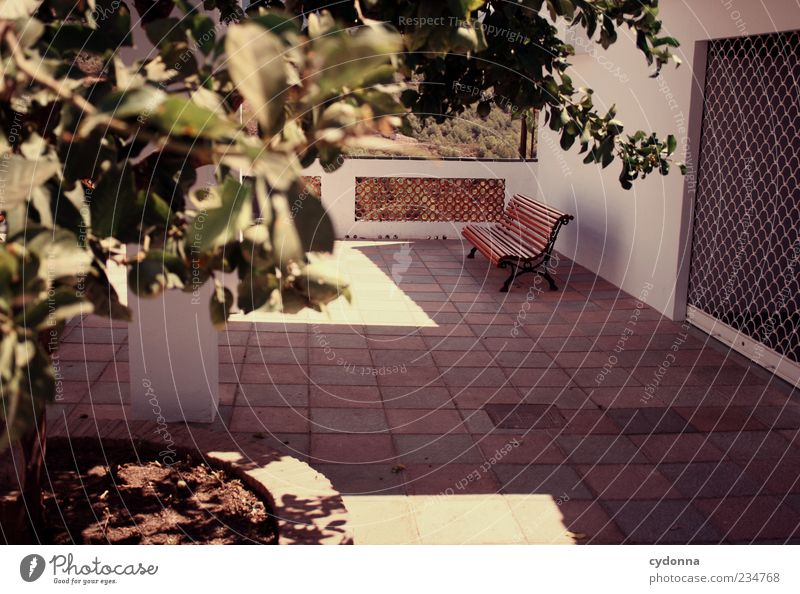 Einfach setzen und entspannen Baum Ferien & Urlaub & Reisen Einsamkeit Haus ruhig Erholung Wand Mauer Pause Bank Tor Spanien Sitzgelegenheit Terrasse Andalusien