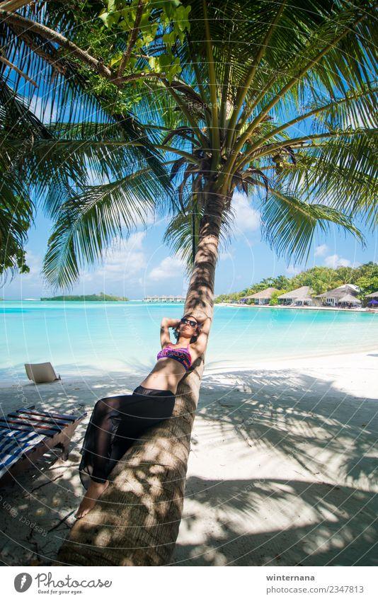 Auf einer Palme Freude Leben Glück Momente Liebe Sonne erstaunlich Fröhlichkeit Malediven blau Wasser Sand weiß traumhaft