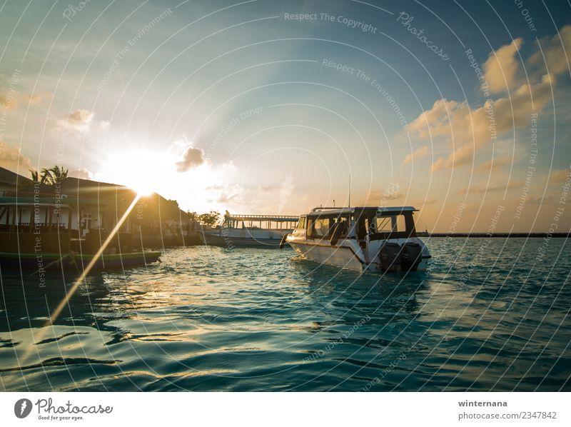 Yachthafen Jachthafen Boote Sonnenuntergang Sonnenschein Sonnenlicht Meer Malediven Freude Abenteuer Fischen Schwimmsport Delphine Himmel blau Wolken