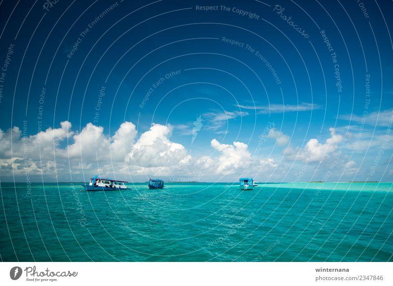 Drei Boote auf dem Meer Schwimmen & Baden Segeln tauchen Wasser Himmel Wolken Schönes Wetter Insel Bootsfahrt Motorboot außergewöhnlich frei Fröhlichkeit