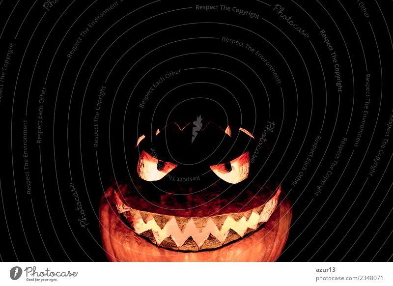 Gruseliger geschnitzter Halloween Kürbis lacht ironisch Kopf Auge Mund Kunst Natur Herbst glänzend Lächeln lachen leuchten Aggression alt bedrohlich dunkel Ekel